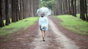 Prognoza pogody na jutro: po pogodnej nocy wkroczy front. Sprowadzi deszcz i burze