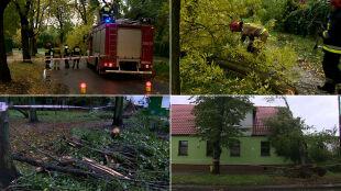 Jedna osoba osoba nie żyje, 18 rannych, tysiące interwencji. Skutki wichur nad Polską
